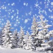 Christmas illustration - snowy trees and snow flakes — Stock Photo