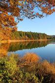 Beautiful moor lake in autumnal colors, bavarian landscape — Stock Photo