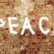 PEACE, spray paint on a damaged brick wall — Stock Photo