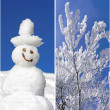Collage - Wintertime — Stock Photo