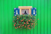 Window of boathouse with painted shutters and flower box — Stock Photo