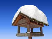 дом птицы с снежный покров, против голубого неба — Стоковое фото