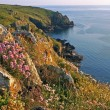 Idyllic coastline of mullion cove, with wildflowers, south west england — Stock Photo