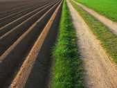 Ploughed soil beside way, agricultural background — Stock Photo