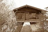 Boathouse with boardwalk and shrubbery, sepia colored — Stock Photo