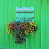 Wooden green painted boathouse facade, closed window with flower box — Stock Photo