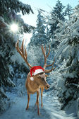 Reindeer with santa claus hat in the forest — Stock Photo