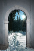 View through arched gate to wintry forest with bright sunshine — Stock Photo