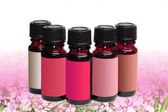 Five phials unlabeled on cherry blossom background — Stock Photo