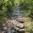 Stock Photo: Rocky footpath in mountains