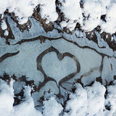 Heart shaped frost pattern in a puddle — Stock Photo