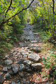 Rocky footpath in the mountains — Stock Photo