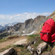 Red knapsack, against austrimountain panorama — Stock Photo #38922671