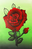 Acrylic painting of a red rose on green background — Stock Photo