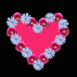 Flower heart with pink copy space, on black background — Stock Photo