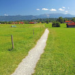 Stock Photo: Hiking trail over green meadow, towards mountain range, bavarian