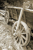 Historic hay cart, covered with ice needles — Stock Photo