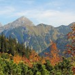 Autumnal karwendel valley and mountain range, austria — Stock Photo