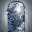 Vintage arched door with view to wintry forest — Stock Photo