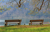 View point with two benches, idyllic lake schliersee, tranquil s — Stock Photo