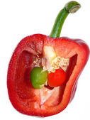Red pepper half with seeds and budding little peppers — Stock Photo