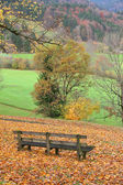 Wooden bench in idyllic autumnal landscape — Stock Photo