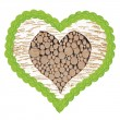 Birch tree heart with frame of linden leafs — Stock Photo #43294955