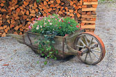 Wooden pushcart, planted with summer flowers — Stock Photo