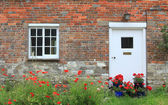House front with red poppy flowers and geraniums — Stock Photo
