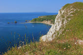 View to mupe bay, lulworth, and steep cliffs — Stock Photo