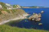 Viewpoint jurassic coast dorset — Stock Photo