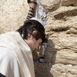 Stock Photo: Jewish Man Praying at the Western Wall