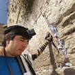 Jewish Man Praying at the Western Wall — Stock Photo #22384095