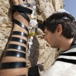 Jewish Man Praying at the Western Wall — Stock Photo #22384113