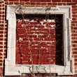 Empty Wooden Frame on Red Bricks Wall — Stock Photo