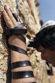 Jewish Man Praying at the Western Wall — Stock Photo
