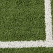 Stock Photo: Artificial Lawn and White Stripe