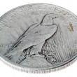 Постер, плакат: Peace Dollar Tails High Angle