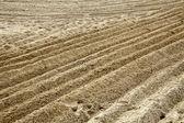 Zaorane piasku — Zdjęcie stockowe
