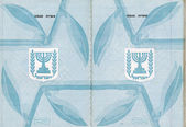 Blank Israeli Passport — Stock Photo
