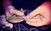 Rolling a Marijuana Joint Lomo Style — Stock Photo