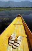 Japonki na łodzi w nagin jezioro — Zdjęcie stockowe