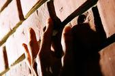 Hand on Brick Wall — Stock Photo