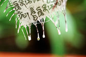 White Buddhist Banner — Stock Photo