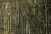 трещины дерева справочная — Стоковое фото