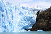 Glacier and Rock Cliff — Stock Photo