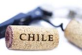 Dos tapones de chile — Foto de Stock