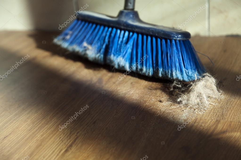 빗자루, 먼지와 쪽모이 세공 마루 바닥에 모피 공 — 스톡 사진 ...