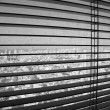 Royalty-Free Stock Photo: Venetian Blinds TLV