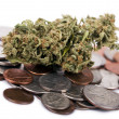 Marijuana and Change — Stock Photo